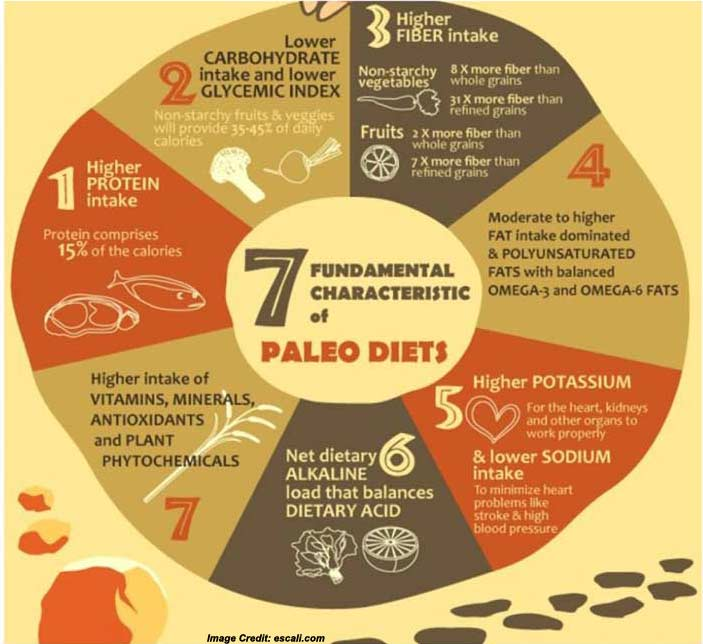 Paleo Diet Definition