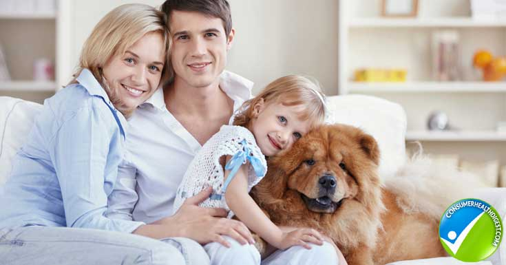 Pets alleviate feelings of loneliness