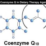 What is the Role of Coenzyme Q in Dietary Therapy Against Aging?