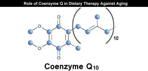 Role of Coenzyme Q