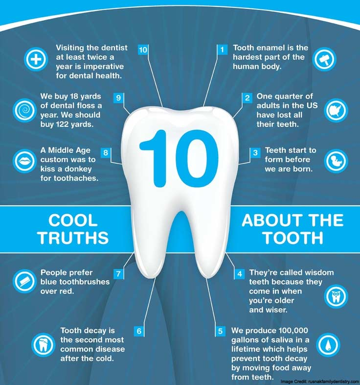 About Tooth Info