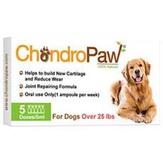 ChondroPaw