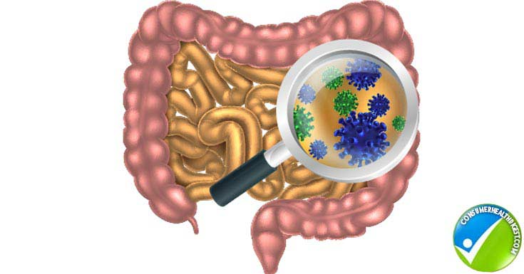Need Colon Cleansing