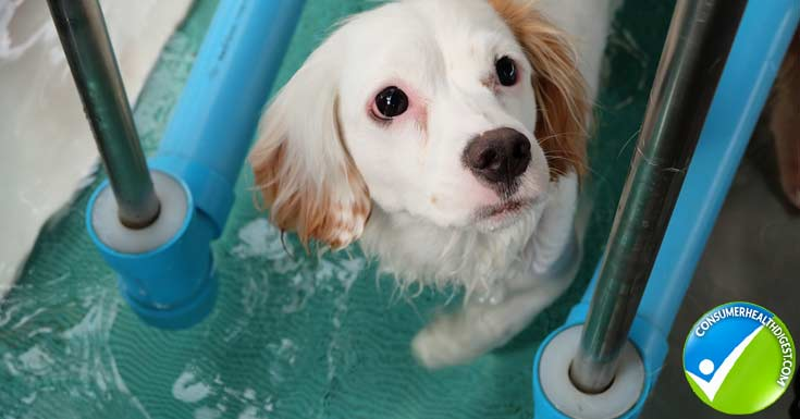 Perform Hydrotherapy