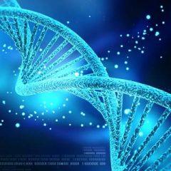 Genes Impact Prostate Cancer