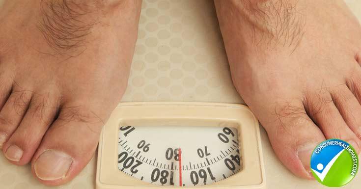 Stomach fat weight loss plan