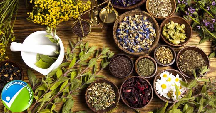 Antioxidant Herbs
