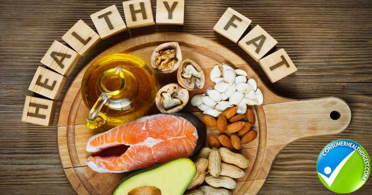 Healthy Fat Protein