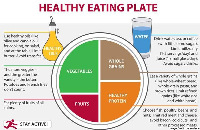 Healthy Meals Info