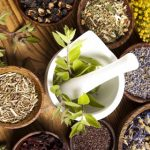 Can Herbs Help Increase Fertility in Men?