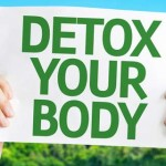 Ageless Body Detox: Is It an Effective Weight Loss Cleanse Program?