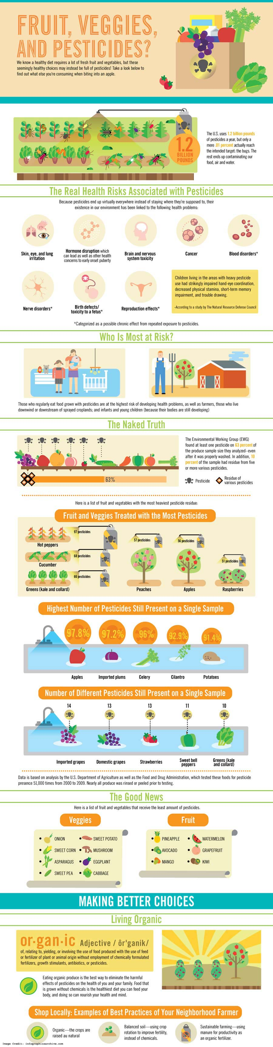 Veggies and Pest Info