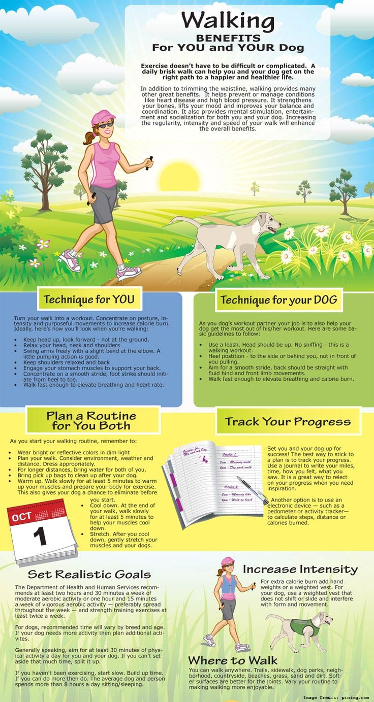 Your Dog info