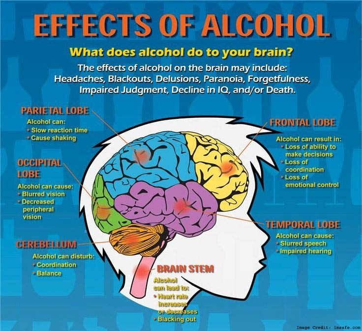 How Alcohol Effect on Brain and Declines Cognitive Ability
