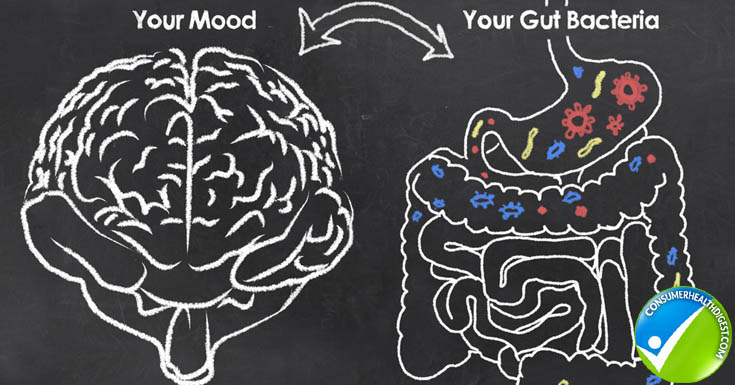 Probiotics and Your Brain