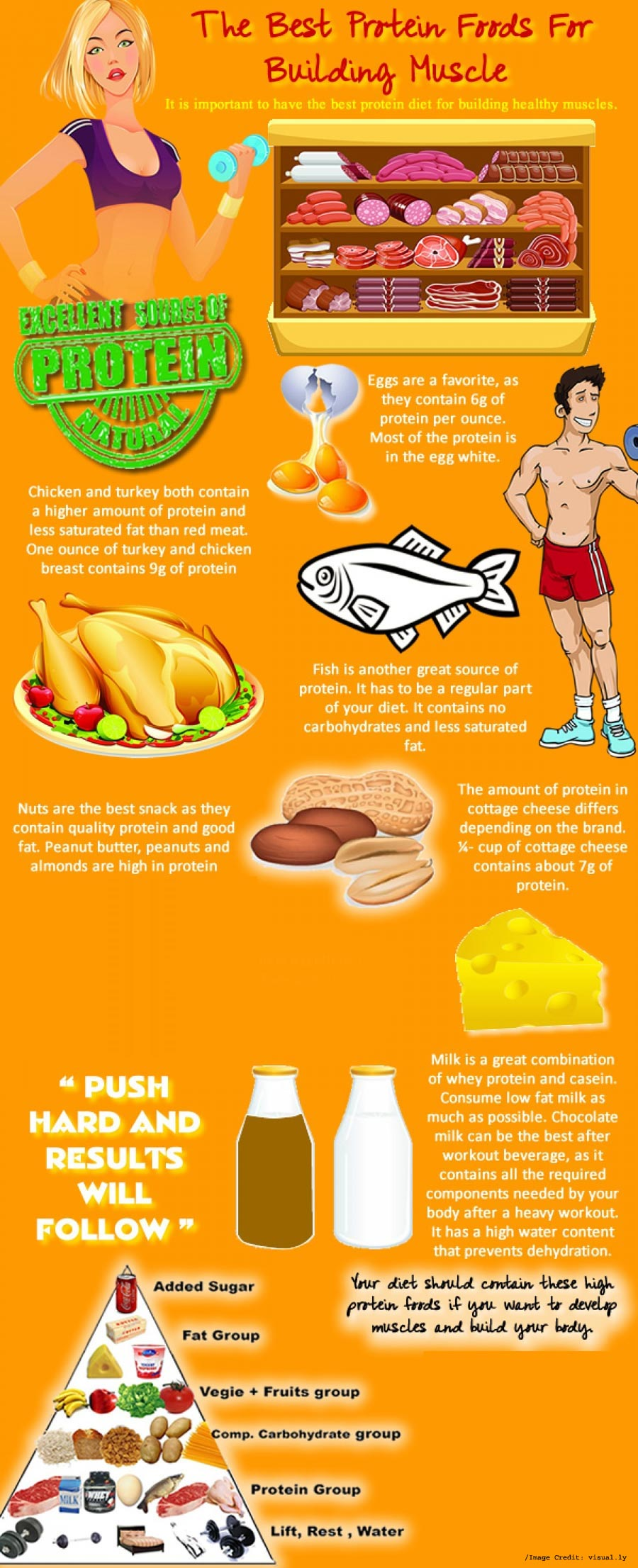 Protein Foods for Building Muscles Info