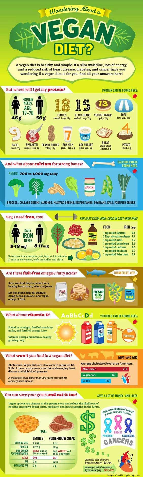 Vegan Diet Info