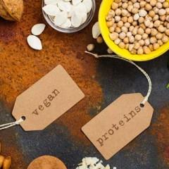 Best Protein Vegan Foods
