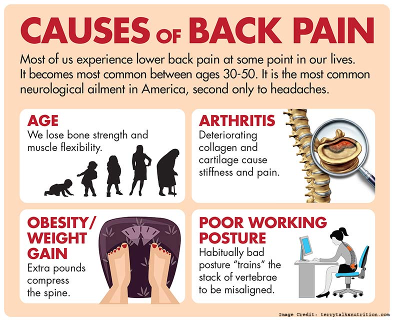 back pain causes symptoms and treatment to reduce back pain