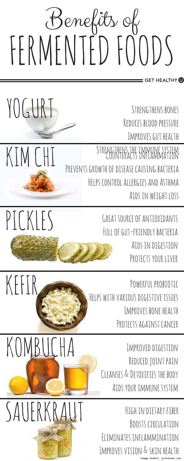 Fermented Food Info