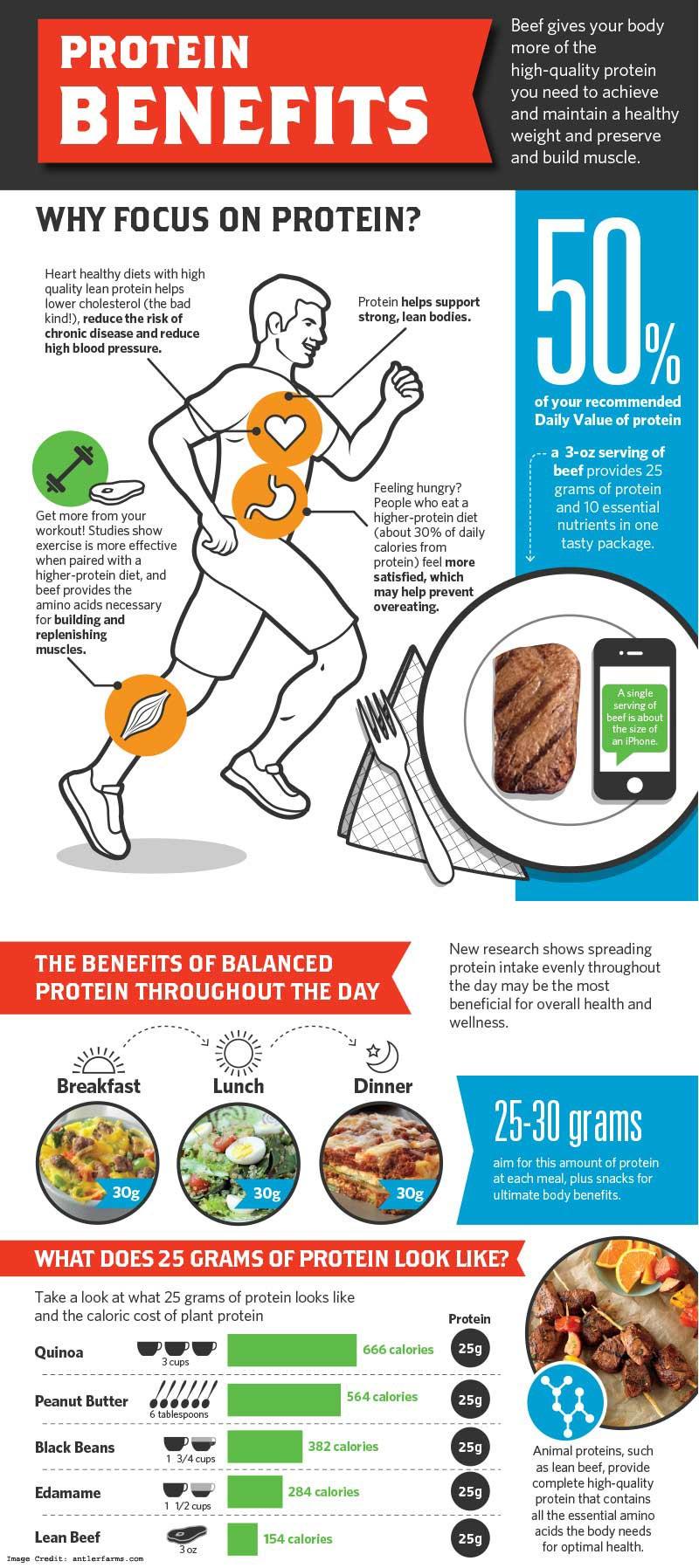 Protein Benefits Info
