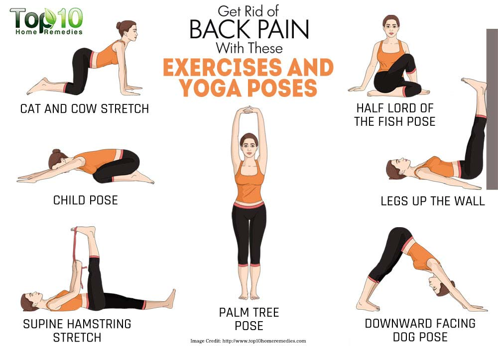 Back Pain Yoga Poses Info