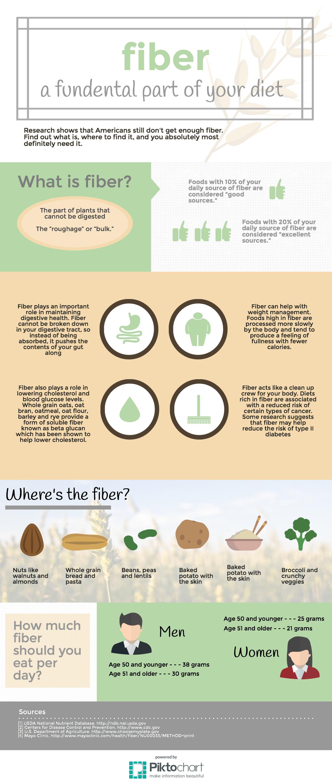 Fiber Infographic