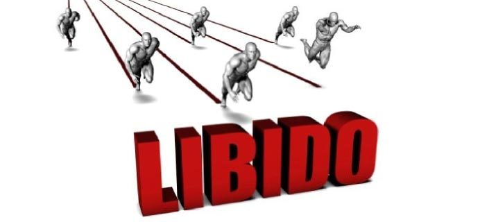 Human Libido