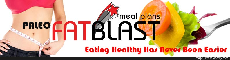 About Fat Blast Meal Plans