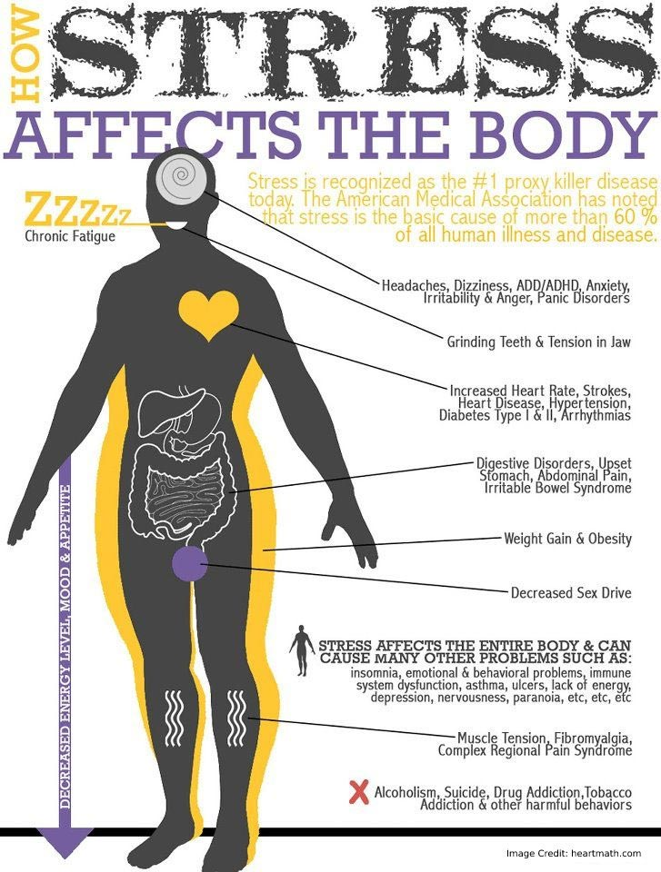 Stress Affects Body Info