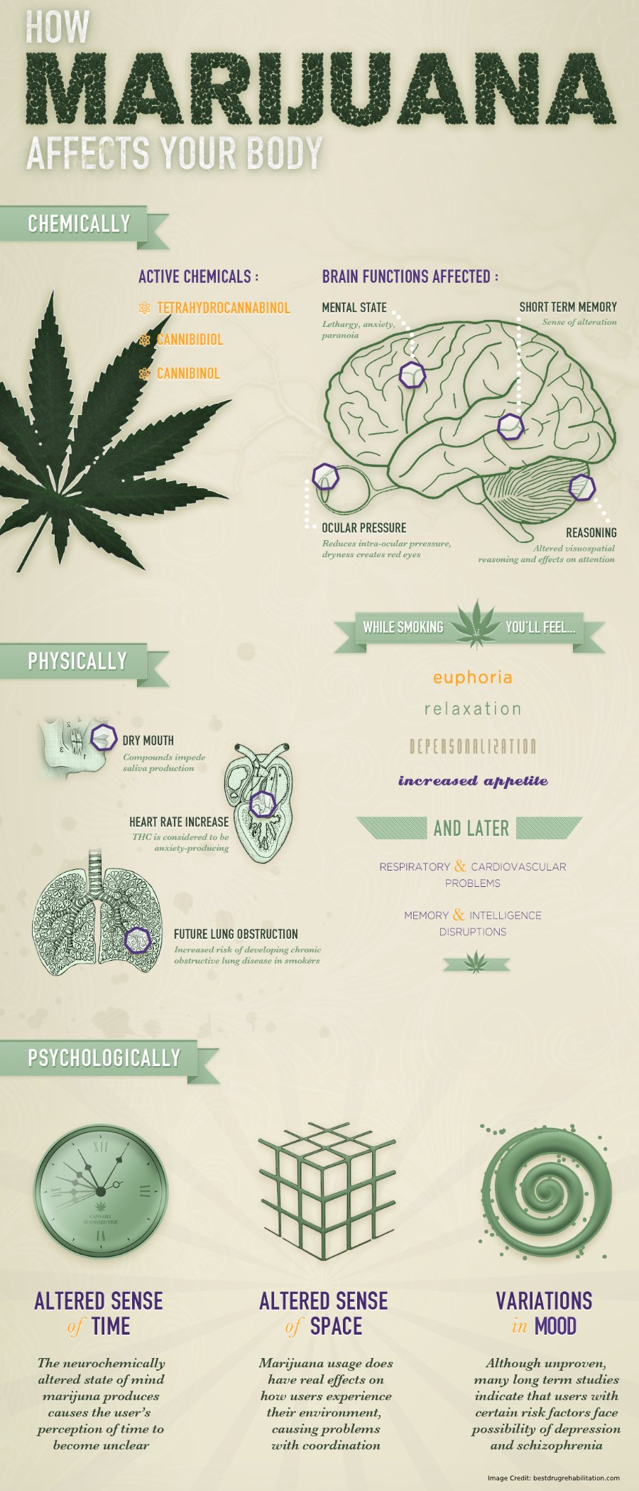 Marijuana Affect Body Info