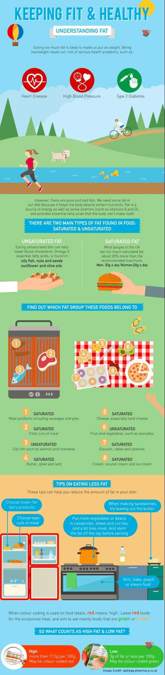 Understanding Fat Info