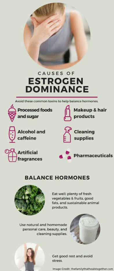 Estrogen Dominance Info