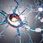 The Short List of The Neurodegenerative Disease's Symptoms