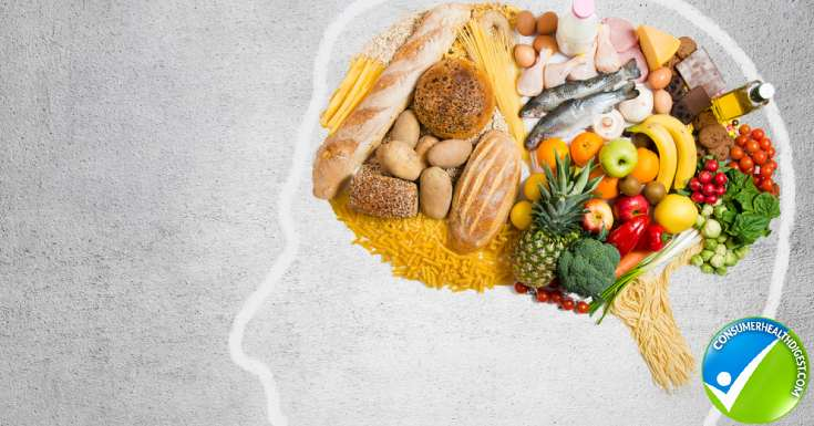Foods For Brain And Memory