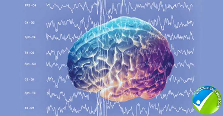 Gamma Brain Waves