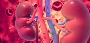 Effect on Kidneys Failure