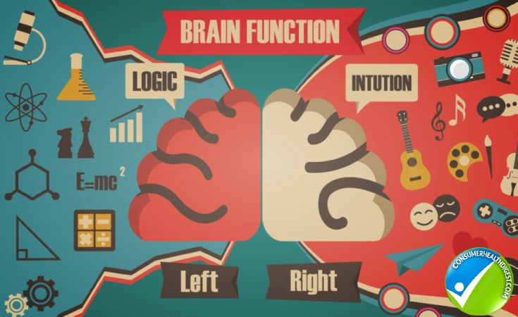 brain function lef right side retro1