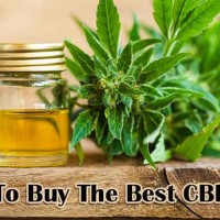 Buy The Best CBD Oil
