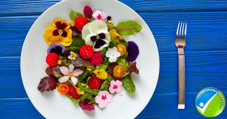 Flowers You Can Eat