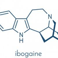 ibogaine Treatment