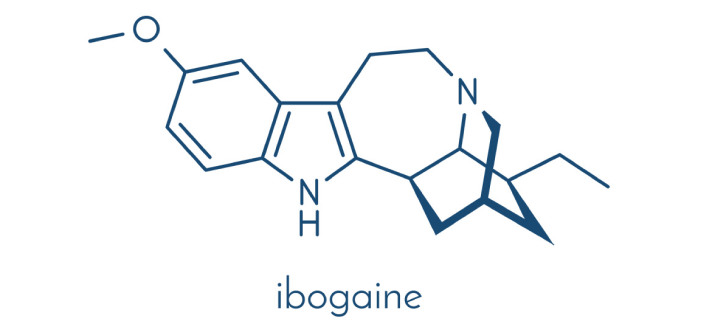 ibogaine Treatment