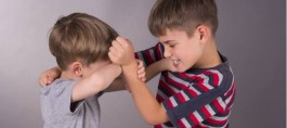 Sibling Bullying Linked to Psychotic Disorders