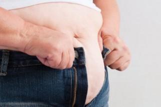 Visceral Fat