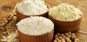 Best Plant-Based Protein Powders for Vegans