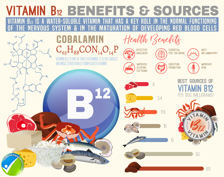 Vitamin B12 Sources Info