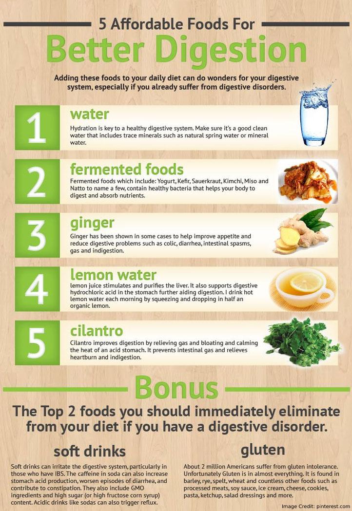 Better Digestion Info
