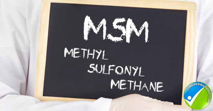 MSM Information