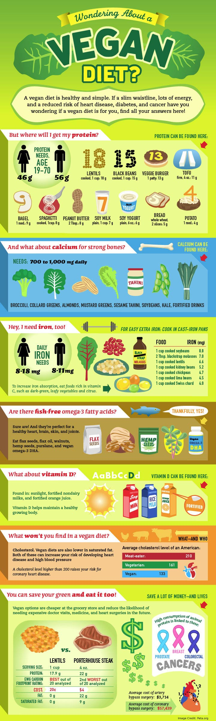Vegan Health Info