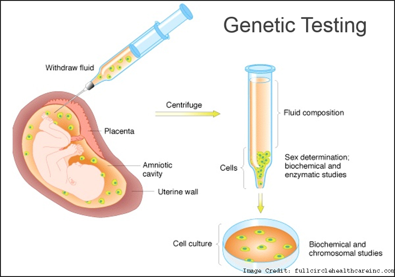 About Genes and Gene Testing